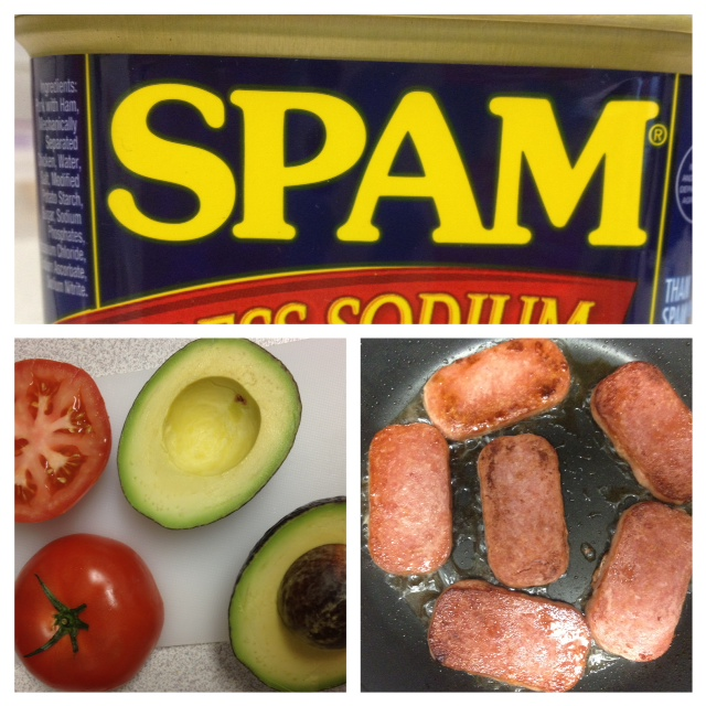 spam i am